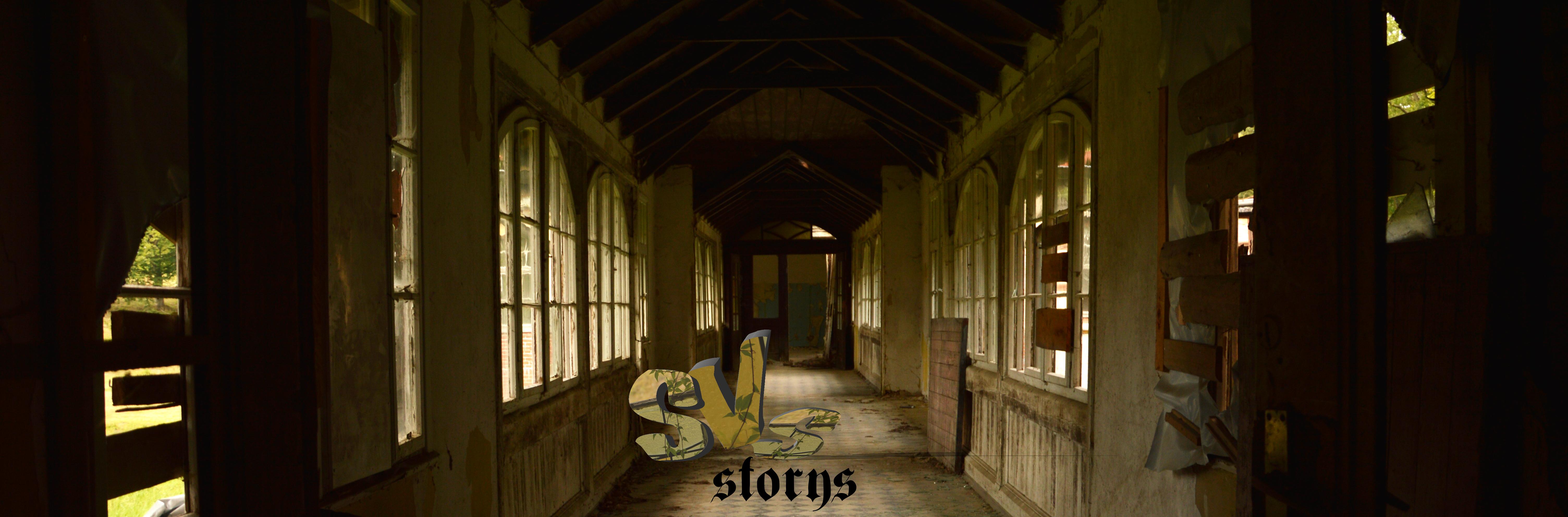 svs-storys
